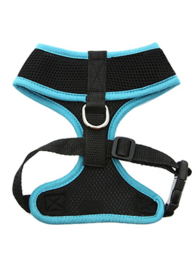 Active Mesh Neon Blue Harness