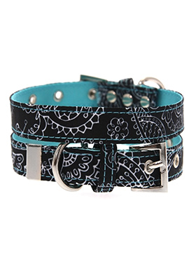 Black & Blue Paisley Collar