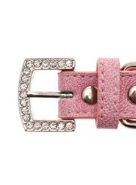 Pink Leather Diamante Collar / Diamante Bone Charm & Lead Set