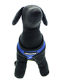 Royal Blue Soft Harness