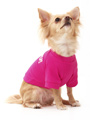Legally Blonde ''OMIGOD!'' Dog T-Shirt