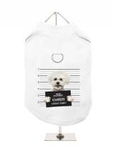 ''Police Mugshot - Bichon Friese'' Harness-Lined Dog T-Shirt