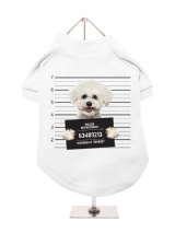 ''Police Mugshot - Bichon Friese'' Dog T-Shirt