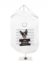 ''Police Mugshot - Boston Terrier'' Harness-Lined Dog T-Shirt